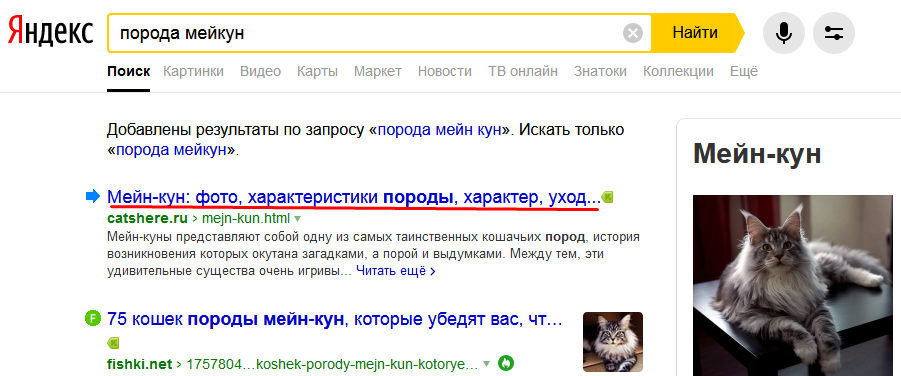 размер мета-тега в Яндексе